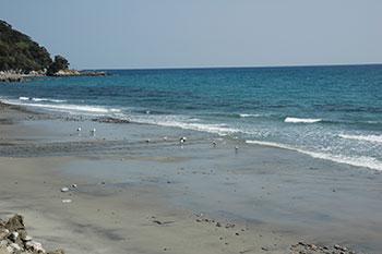 甑島の海岸