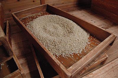 祁答院蒸溜所の手造り麹